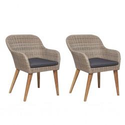stradeXL Krzesła ogrodowe z poduszkami, 2 szt., polirattan, brązowe