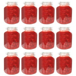 stradeXL Glass Jam Jars with Lock 12 pcs 5 L