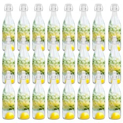 stradeXL Glass Bottles with Clip Closure 24 pcs 1 L