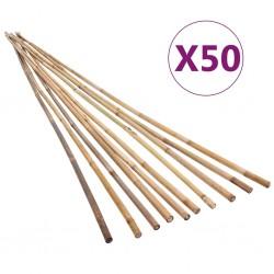 stradeXL Tyczki bambusowe do ogrodu, 50 szt., 150 cm