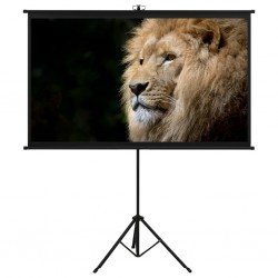 """stradeXL Projection Screen with Tripod 50"""" 16:9"""