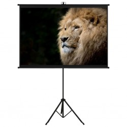 "stradeXL Projection Screen with Tripod 63"" 1:1"