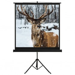 "stradeXL Projection Screen with Stand 48"" 1:1"