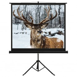 "stradeXL Projection Screen with Stand 60"" 1:1"