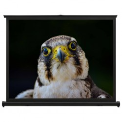 "stradeXL Desktop Projection Screen 40"" 4:3"