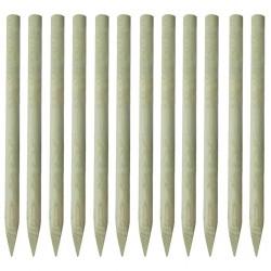 stradeXL Zaostrzone słupki ogrodzeniowe 12 szt. drewno impregnowane 1,5m