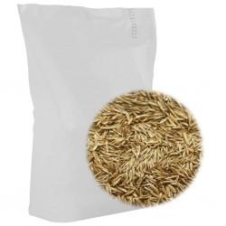 stradeXL Nasiona trawy na suche i słoneczne tereny, 30 kg