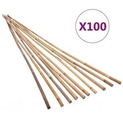 stradeXL Tyczki bambusowe do ogrodu, 100 szt., 120 cm